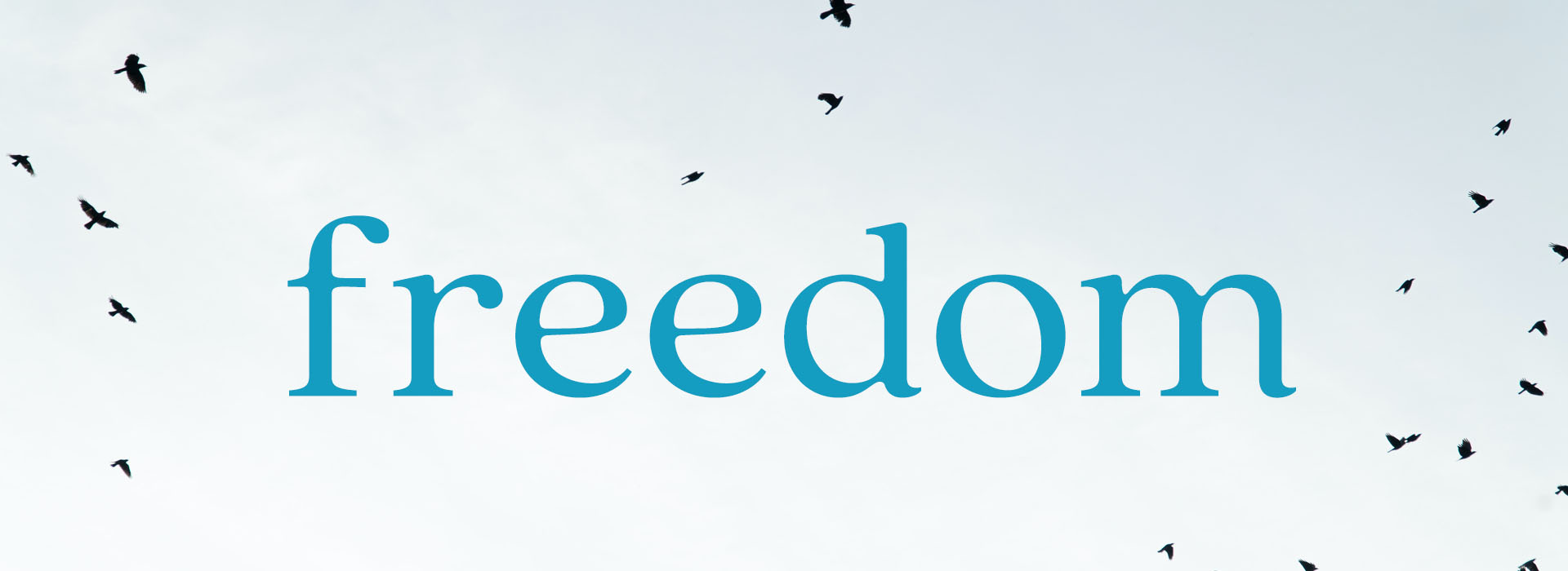 Freedom Website Banner